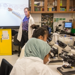 Professor pointing to white board in lab - SM